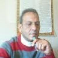 Tarek Ahmed Mohamed A.