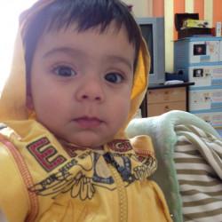 Kawakeb M.
