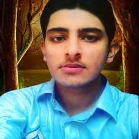 Imran Ali D.