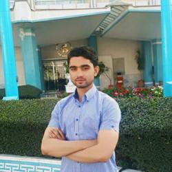 Fardin O.