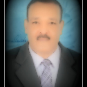 Mohamed Elsayed R.