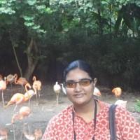 Sharmila S.